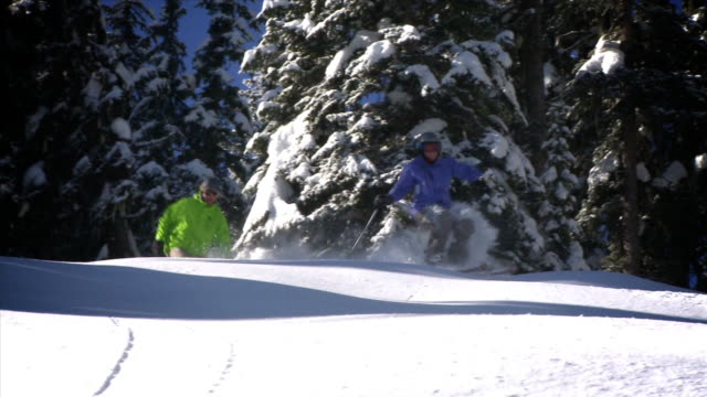 ts telemark skiing and snowboarding powder / rossland, british columbia, canada - telemark stock videos and b-roll footage