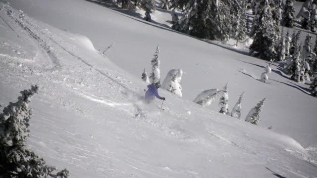 slo mo telemark skiing powder / rossland, british columbia, canada - telemark stock videos and b-roll footage