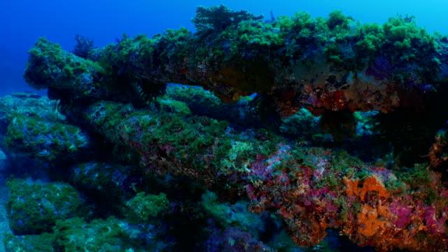 Telephone pole artificial reef undersea, Taiwan