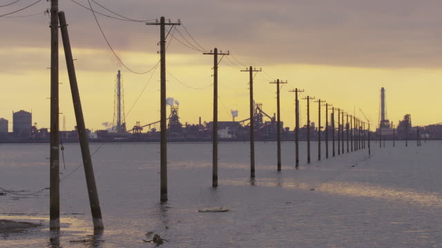telephone poles in tokyo bay - telegraph pole stock videos and b-roll footage