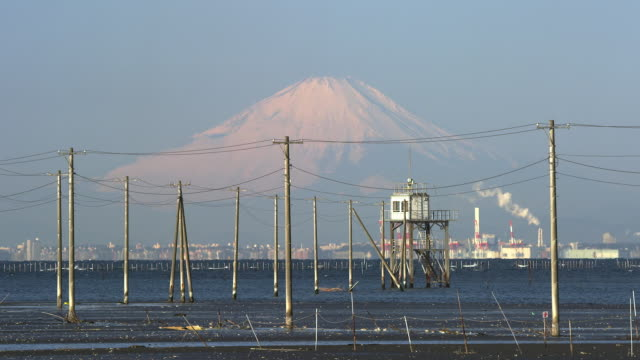 telephone poles in tokyo bay with mt. fuji in background - telegraph pole stock videos & royalty-free footage