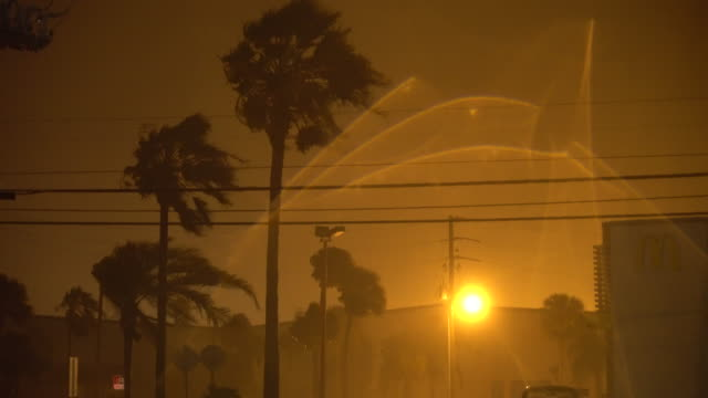 howling hurricane force winds cause palm trees to bend and sway violently in cape canaveral as hurricane matthew bears down on the florida coast - bending stock videos & royalty-free footage