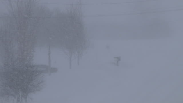 telephoto shot of very heavy snow falling creating whiteout conditions during an intense lake effect snow storm in upstate ny - loch stock videos & royalty-free footage