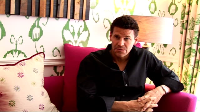 David Boreanaz interview David Boreanaz interview continues SOT On Motley Crue / what will happen in season 5 / on his previous show Angel and why...