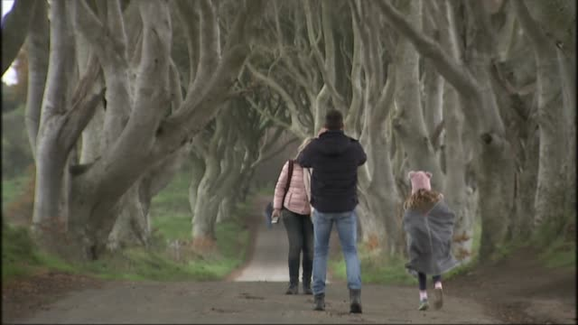 final season of 'game of thrones': belfast premiere; northern ireland: county antrim: ext various shots of tourists visiting 'the dark hedges' avenue... - television game show stock-videos und b-roll-filmmaterial