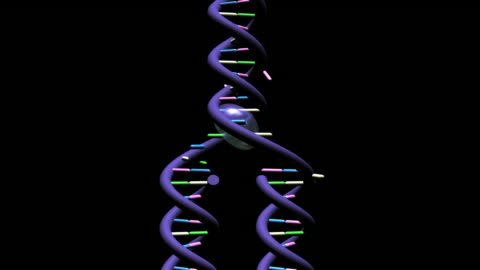 telomere part 2- with rgb +alpha channel - alpha channel stock videos & royalty-free footage