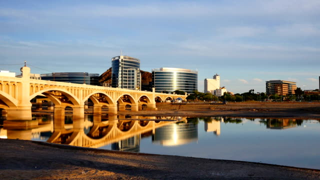 tempe, az - arizona cactus stock videos & royalty-free footage