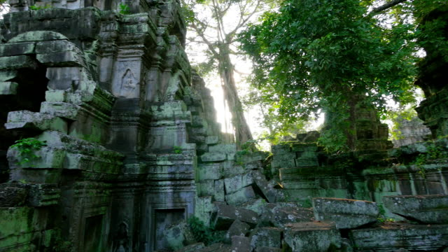 temple made of rocks and trees - angkor wat stock videos and b-roll footage