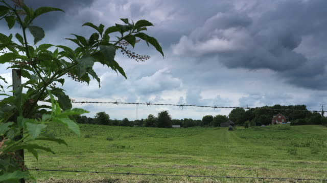 A Tennessee farmer rushes to mow a field with his tractor as a storm looms behind him.