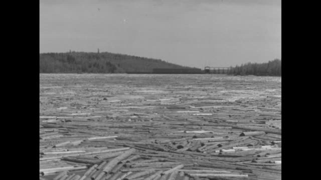 tens of thousands of floating logs on the gatineau river / water rushing through the mercier dam with logs in the water below / men on floating... - pole stock videos & royalty-free footage