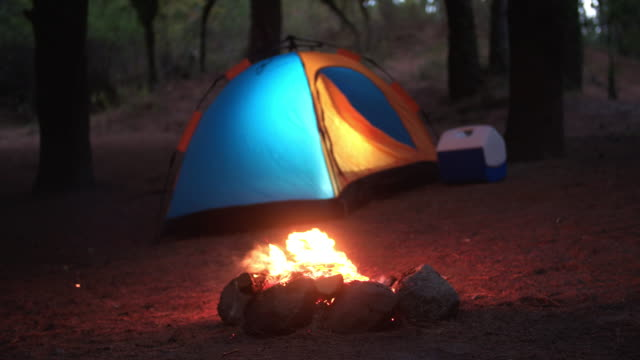 tent and campfire in forest - outdoor pursuit stock videos & royalty-free footage