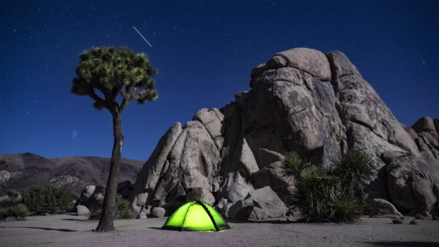 tl tent in joshua tree under bright stars at night - joshua tree national park stock videos & royalty-free footage