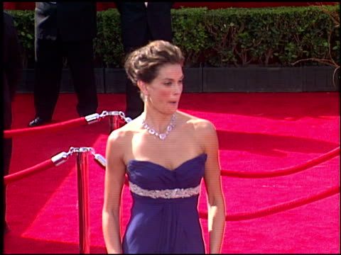 teri hatcher at the 2005 emmy awards entrances at the shrine auditorium in los angeles, california on september 18, 2005. - teri hatcher stock videos & royalty-free footage