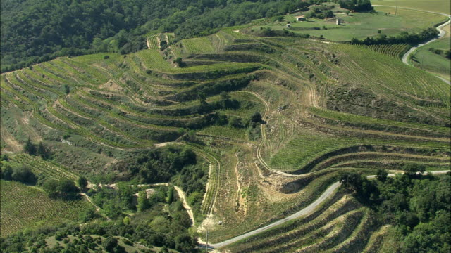 AERIAL, Terraced fields at Valence, Rhone-Alpes, France
