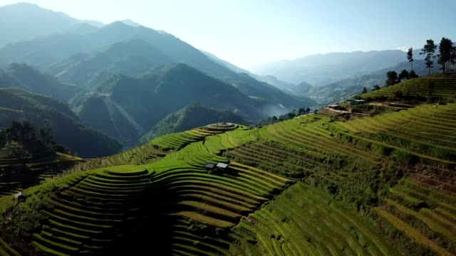 terraced paddy fields  farm on hilly or mountainous terrain, normally farming in east, south, and southeast asia - cambodia stock videos and b-roll footage