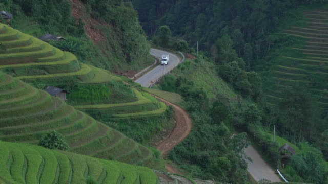 terraced rice field at evening time with the curve of road at mu cang chai - sa pa stock videos and b-roll footage