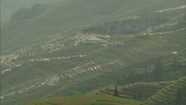 ws ha pan terraced rice fields, guilin, guangxi zhuang autonomous region, china - guangxi zhuang autonomous region china stock videos & royalty-free footage