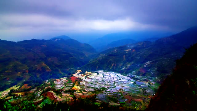 terraced rice fields in laohuzui yuanyang - rice terrace stock videos and b-roll footage