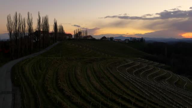 aerial terraced vineyard in the sunset - prekmurje stock videos & royalty-free footage