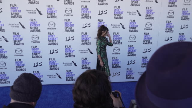 terri seymour at the 2020 film independent spirit awards on february 08 2020 in santa monica california - film independent spirit awards stock videos & royalty-free footage