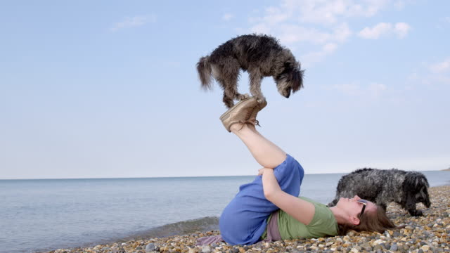 SLO MO Terrier balancing on woman's feet on beach