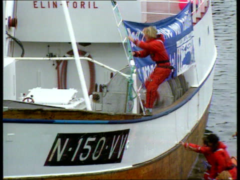 new laws come into force lib scotland glasgow tgv greenpeace protesters climbing on board whaler ship elin toril from dinghy zoom in protesters in... - arpone video stock e b–roll