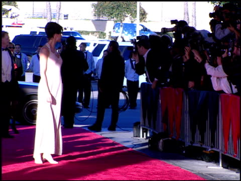 terry farrell at the 1996 screen actors guild sag awards at santa monica civic auditorium in santa monica california on february 25 1996 - terry farrell stock videos and b-roll footage