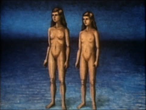 stockvideo's en b-roll-footage met 1985 animation testicles manufacturing sperm cells - borstkas
