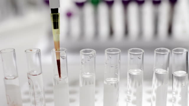testing in laboratory - dna test stock videos and b-roll footage