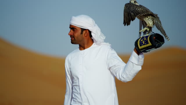 tethered falcon on glove of male arab owner - bird hunting stock videos & royalty-free footage