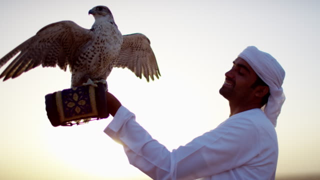 Tethered falcon on glove of male Arab owner