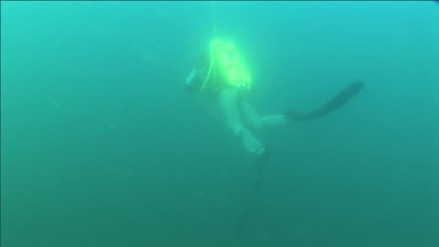 a tethered scuba diver in full face mask and flippers swims in the ocean. - full stock videos and b-roll footage