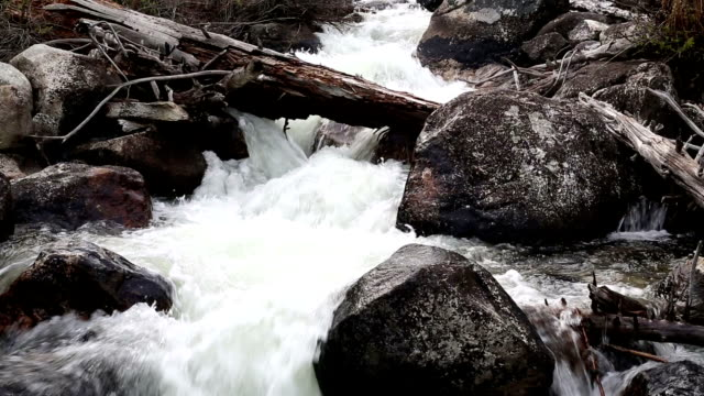 teton national park-wasserfall - wyoming stock-videos und b-roll-filmmaterial