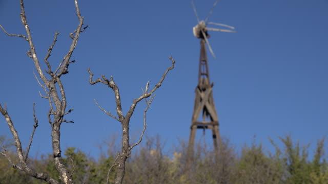Texas Big Bend broken windmill and trees Sam Nail Ranch