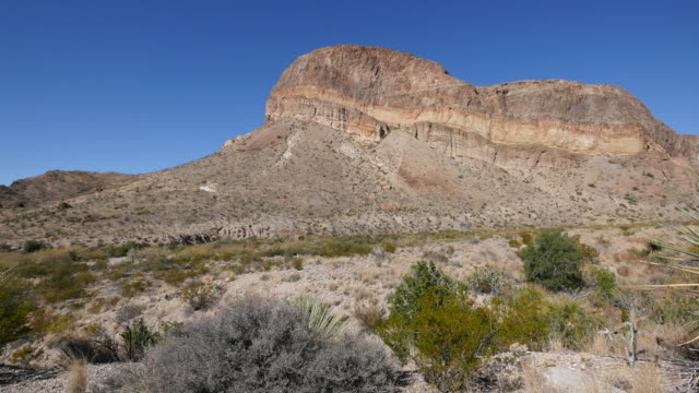 texas big bend burro mesa pan to yucca - yucca stock videos & royalty-free footage