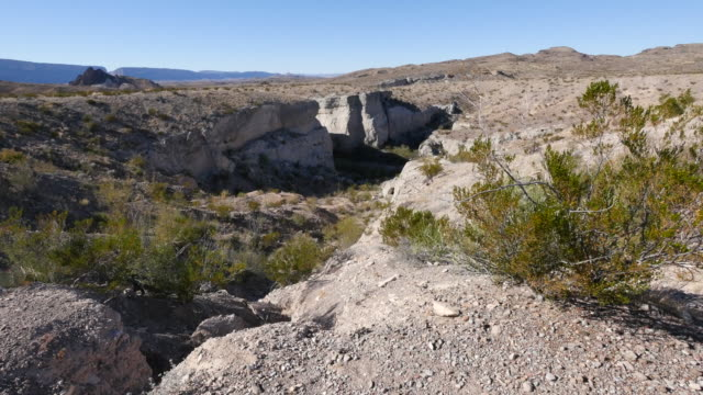 Texas Big Bend Tuff Canyon with creosote bush