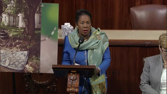 vidéos et rushes de texas representative sheila jackson lee says that her hometown of houston has a tropical climate with many climatic similarities with other states on... - gulf coast states