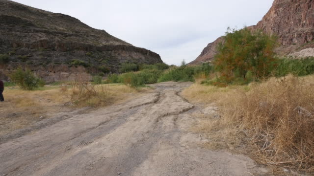 texas river road moving down dirt road - tire track stock videos & royalty-free footage