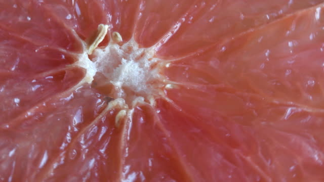 Texture of a Grapefruit Flesh Moving in Natural Light. Slice of Citrus Fruit