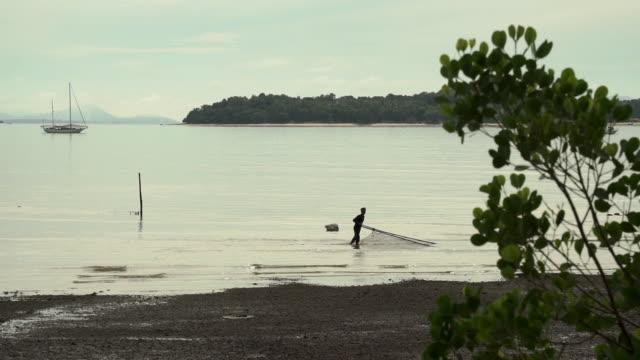 thai fisherman using traditional push net fishing method - walking in water stock videos & royalty-free footage