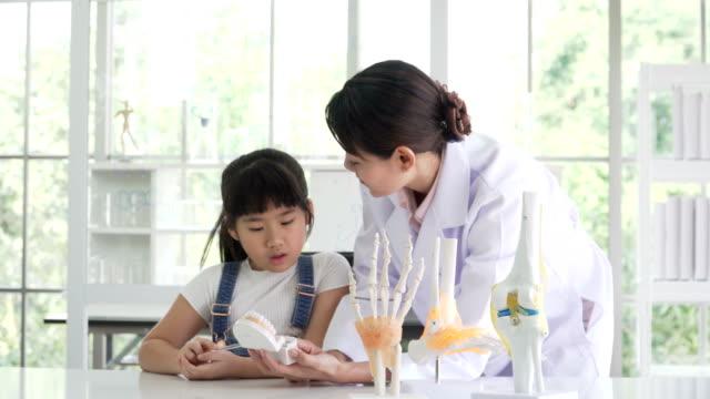 タイの女の子が医者半ば日本語と彼女の歯について学習をお楽しみください。 - 歯科衛生点の映像素材/bロール