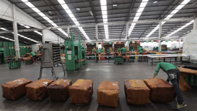 vídeos de stock, filmes e b-roll de thai hua employees trim smoked rubber sheets and make ballots covered in calcium carbonate solution at the thai hua rubber pcl factory in samnuktong,... - látex borracha