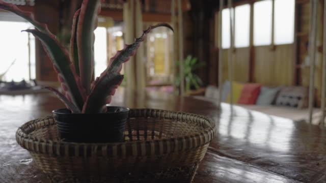 タイスタイルチークハウスインテリアキッチンアイランドと長椅子 - 観葉植物点の映像素材/bロール
