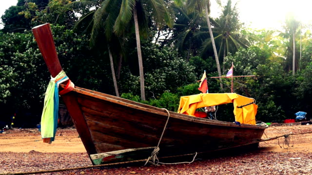 thai taxi boats: traditional wooden longtail boat - water taxi stock videos & royalty-free footage