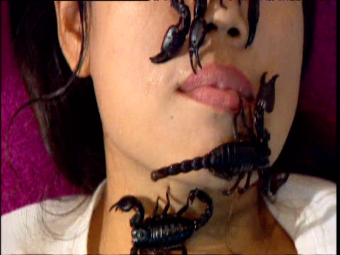 thai woman with scorpions on her face - south east asia stock videos & royalty-free footage
