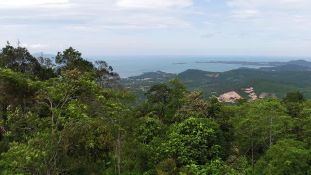thailand flyover forest - insel ko samui stock-videos und b-roll-filmmaterial