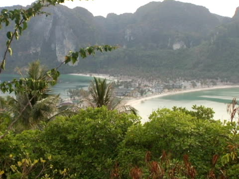 stockvideo's en b-roll-footage met ws, zi, ms, thailand, ko phi phi, tourist resort along coastline - waaierpalm