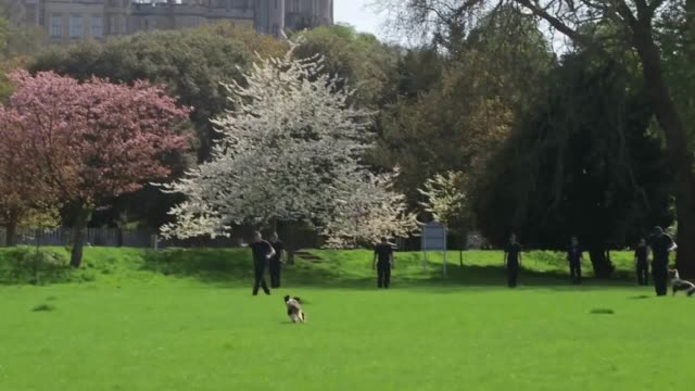 vídeos de stock e filmes b-roll de thames valley police search teams including the dog unit in windsor ahead of the royal wedding of prince harry and meghan markle interviews with pc... - meghan markle