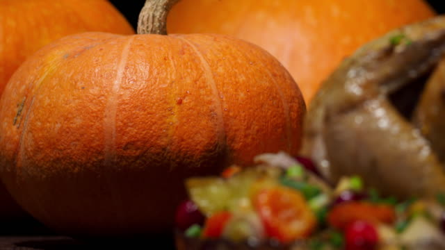 thanksgiving chicken and pumpkins - thanksgiving plate stock videos & royalty-free footage