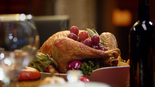 slo mo thanksgiving turkey - thanksgiving stock videos and b-roll footage